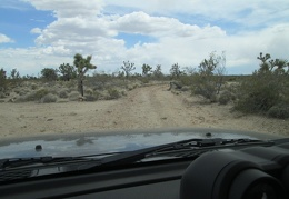Here's another of those BLM OHV road signs