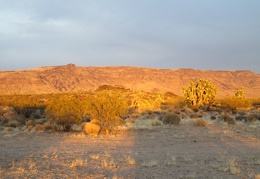 I catch the most orange end-of-day light glowing on nearby Piute Mesa