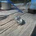 I take a look at a piece of shiny obsidian that I found near my picnic table