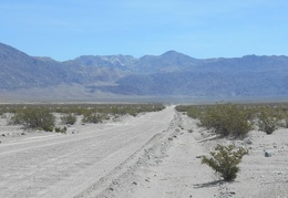 From the floor of Saline Valley, I glance back up toward last night's campsite