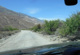 I resume my drive up Saline Valley Road and notice it's getting greener
