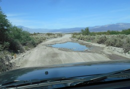 Water, probably salty, spills over onto Saline Valley Road