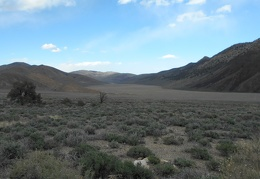 Welcome to Cowhorn Valley and its dry lake