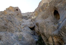 Critters have lots of places to hide in Dedeckera Canyon