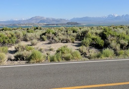 A stop along Hwy 167 for another view across Mono Lake to Mono Craters