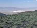 Big view from my sagebrush plateau across the valley to the Pilot Mountains