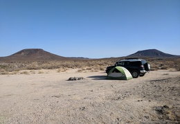 I wake up to a sunny morning in Mojave National Preserve